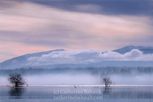 Catherine Babault Photography